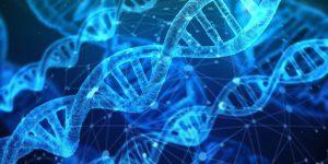 ¿Es hereditaria la fibromialgia?